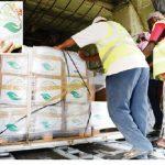Kingdom distributes 30,000 food baskets in Yemen's Hodeidah